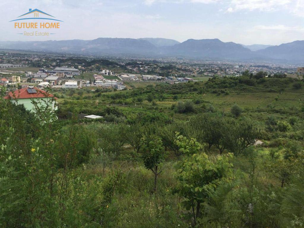 Shitet, Tokë, Kashar, Tiranë