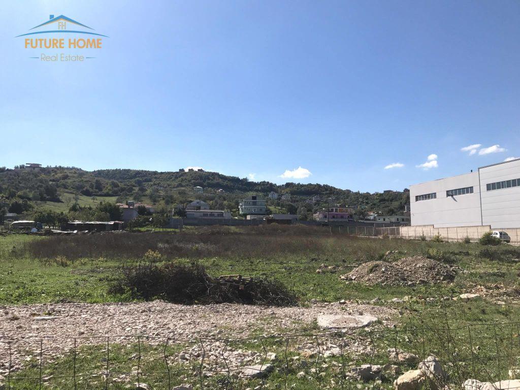 Shitet,Toke,Autostrada Tirane-Durres