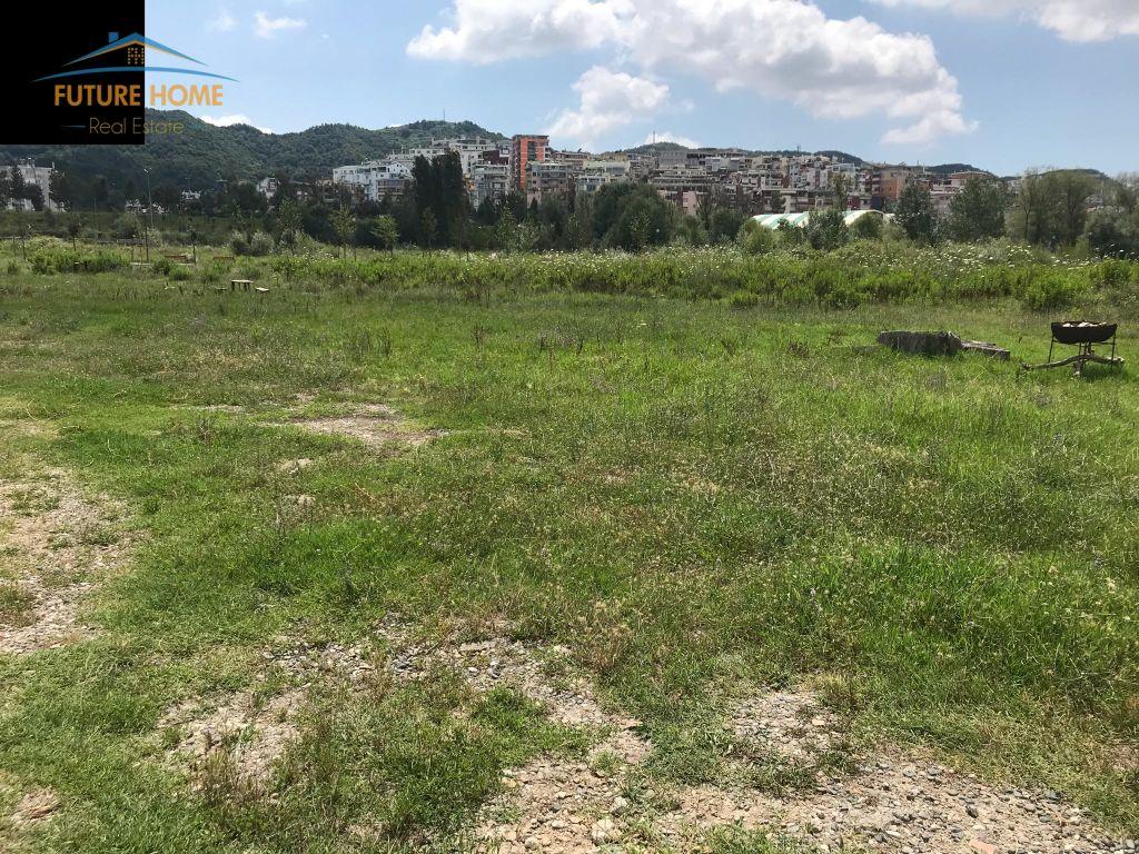 Shitet, Toke,Liqeni Artificial, Tiranë