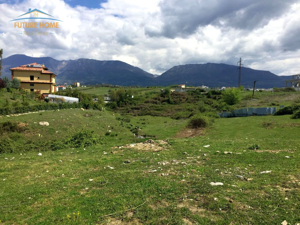 Shitet, Tokë, TEG, Tiranë