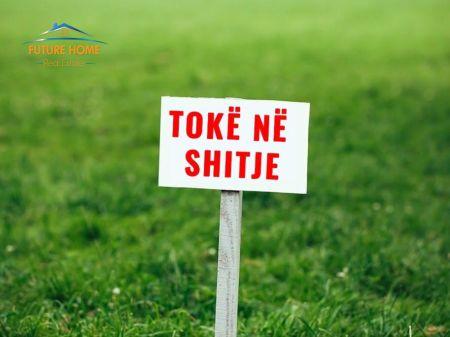 Shitet,Toke, Mullet, Tiranë.